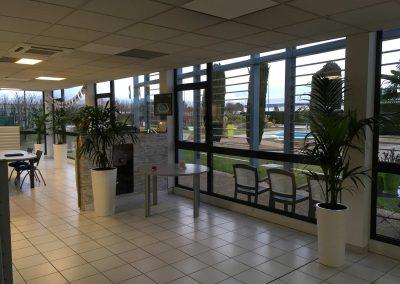 Décoration-végétale---Parc-Expo-Piscines-Waterair-2