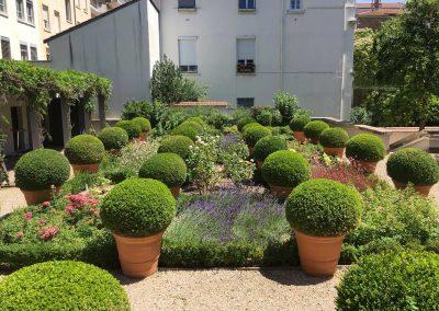 Entretien d'un jardin à la francaise à Lyon 6
