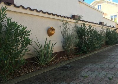 Plantations petit jardin sur Villeurbanne