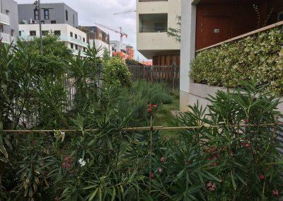 Réalisation d'un jardin d'une résidence et entretien annuel à Lyon-Gerland