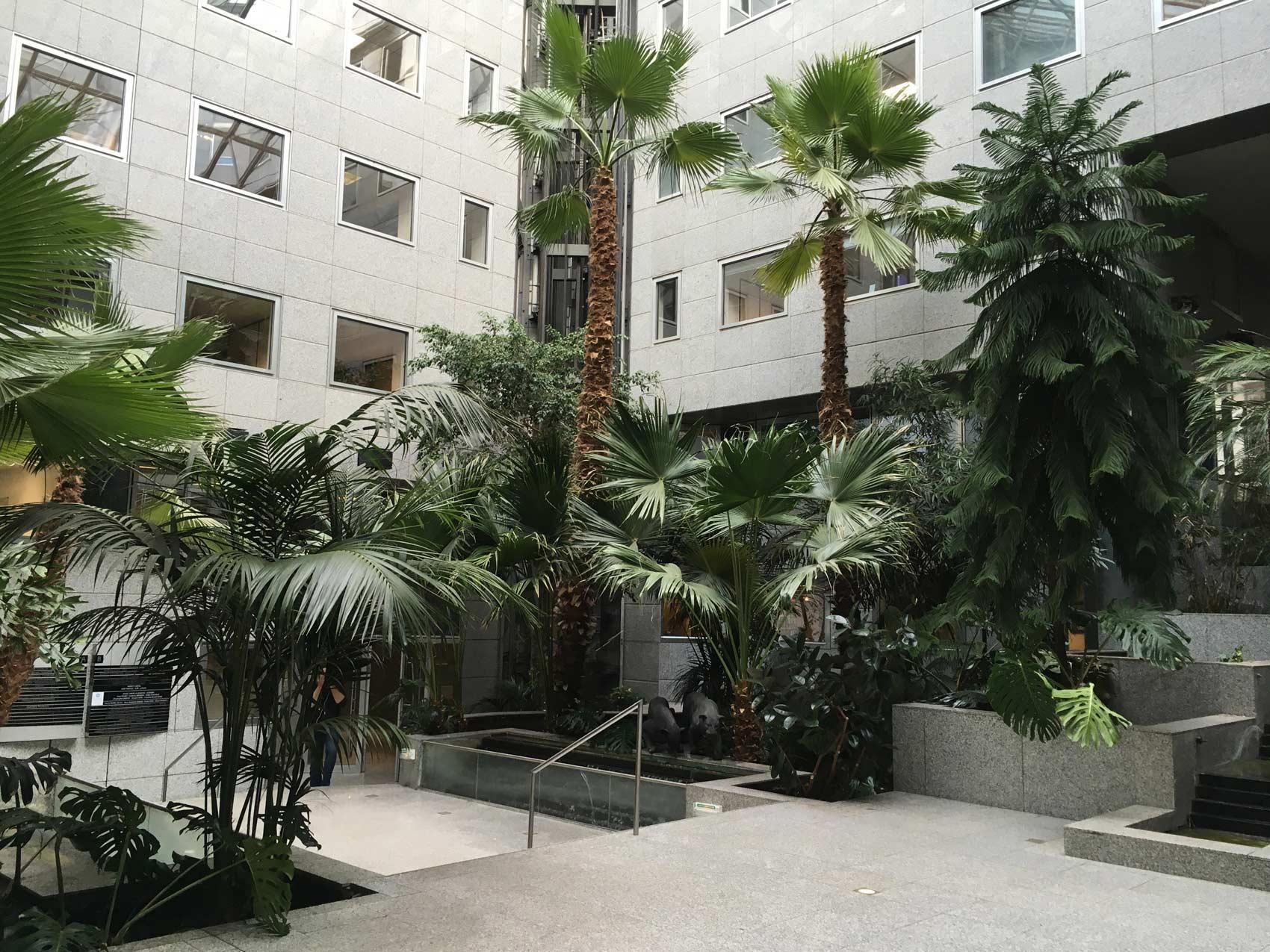 Entretien de parcs & jardins