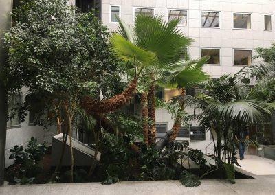 Remise en état d'un jardin tropical et entretien annuel - Lyon 6 3