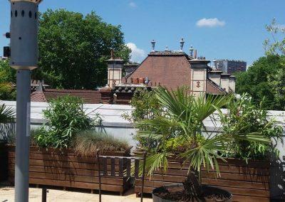 N18 - Décoration végétale d'une toiture terrasse sur Lyon